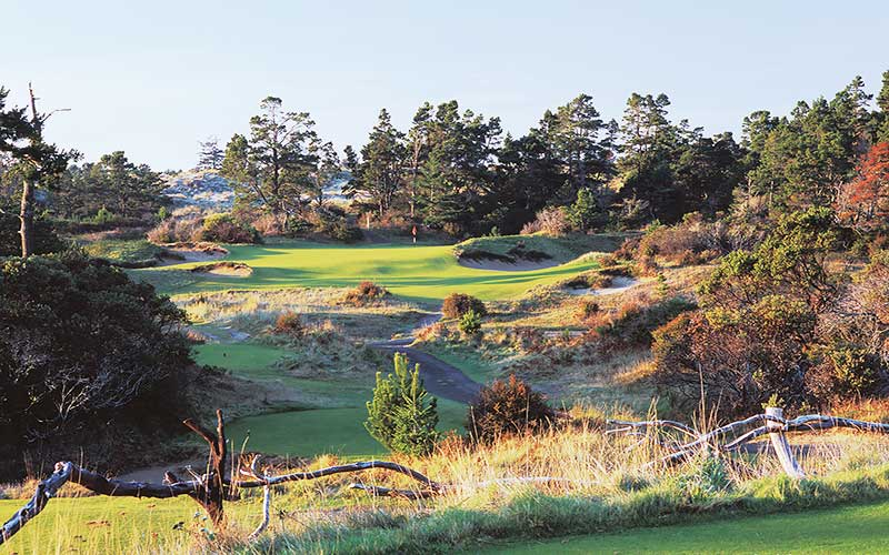 BANDON TRAILS