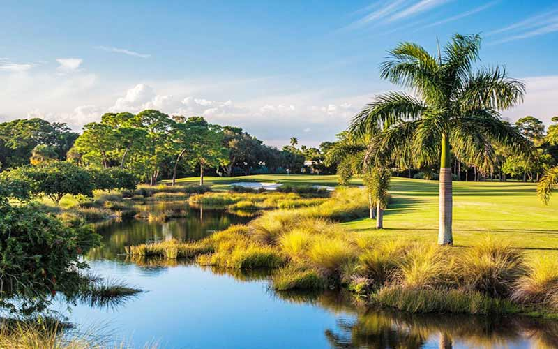 THE FAZIO COURSE